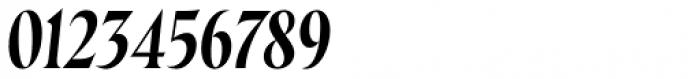 Wayfinder CF Thin Italic Font OTHER CHARS