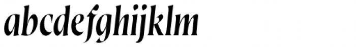 Wayfinder CF Thin Italic Font LOWERCASE