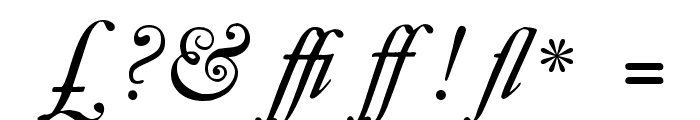 CaslonBookItalicWF Font OTHER CHARS