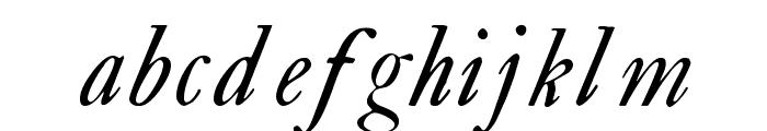 CaslonBookItalicWF Font LOWERCASE