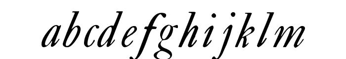 CaslonSwashItalicWF Font LOWERCASE