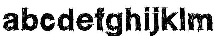WC ROUGHTRAD Bta Bold Font LOWERCASE
