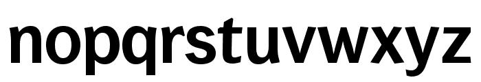 WendelinReduced-Halbfett Font LOWERCASE