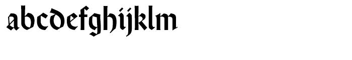 Wei Rundgotisch Standard D Font LOWERCASE