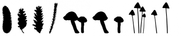 We Love Nature Forest Font UPPERCASE