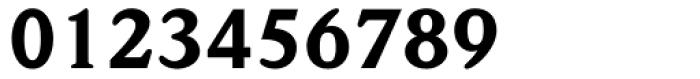 Weidemann Black Font OTHER CHARS