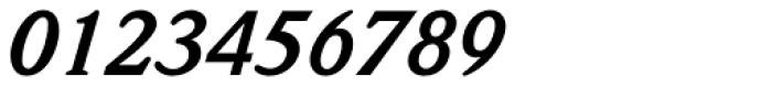 Weidemann Std Bold Italic Font OTHER CHARS