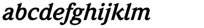 Weidemann Std Bold Italic Font LOWERCASE