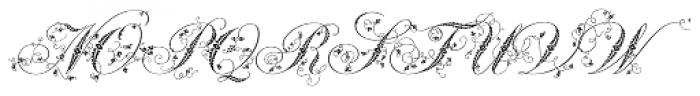 Weingut Script Flourish Font UPPERCASE