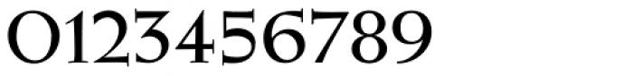 Wellsbrook Initials SG Heavy Font OTHER CHARS
