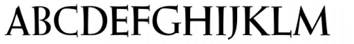 Wellsbrook Initials SG Heavy Font LOWERCASE