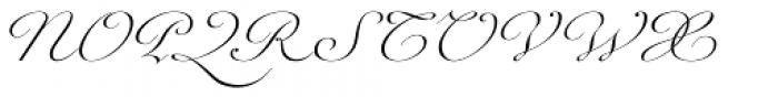 Werdet Script Light Font UPPERCASE