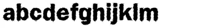 Wet Dog Font LOWERCASE