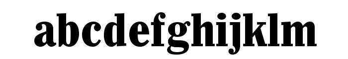 Whitin-CondensedBlack Font LOWERCASE