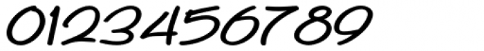 Whiteboard Modern Italic Font OTHER CHARS