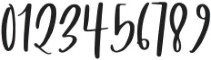 Wildcat Regular otf (400) Font OTHER CHARS