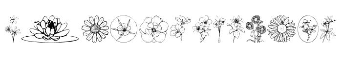 Wildflower III Font LOWERCASE