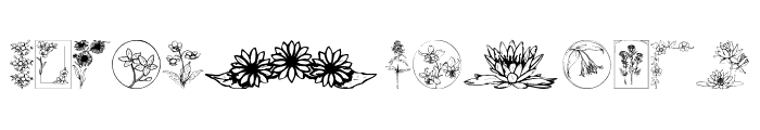 Wildflower IV Font LOWERCASE