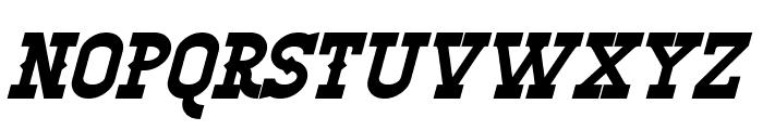 Winslett Bold Italic Font LOWERCASE