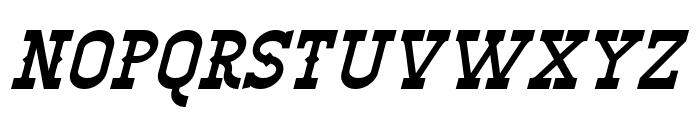 Winslett Italic Font UPPERCASE