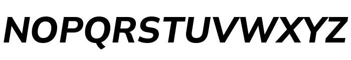 Winston Bold Italic Font UPPERCASE