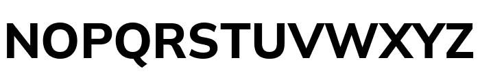 Winston Bold Font UPPERCASE