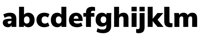 Winston ExtraBold Font LOWERCASE