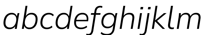 Winston Light Italic Font LOWERCASE