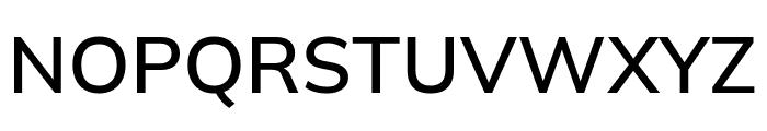 Winston Medium Font UPPERCASE