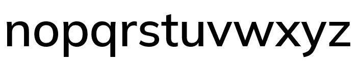 Winston Medium Font LOWERCASE