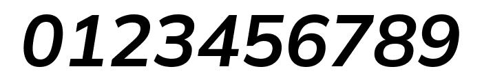Winston SemiBold Italic Font OTHER CHARS