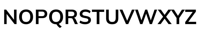 Winston SemiBold Font UPPERCASE