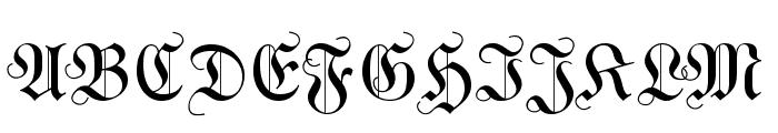 WittewittMajuscles-Flourish Font UPPERCASE
