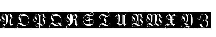 WittewittMajuscles-FlourishBricks Font UPPERCASE