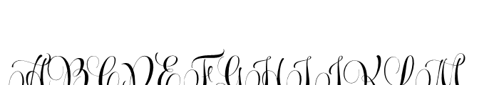 Wishes Script Pro Display Bold Font UPPERCASE