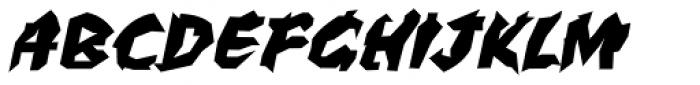 WILD1 Larra Bold Italic Font UPPERCASE