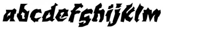 WILD1 Larra Bold Italic Font LOWERCASE