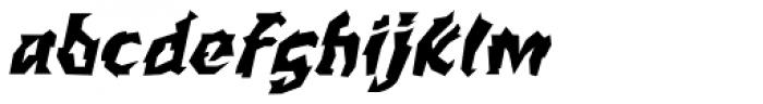 WILD1 Larra Normal Italic Font LOWERCASE