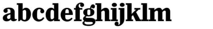 Wichita Serial ExtraBold Font LOWERCASE