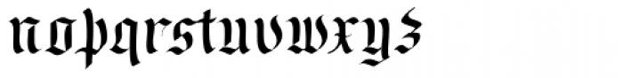 Wilde Fraktur Pro Font LOWERCASE