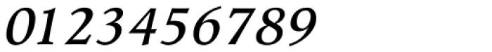 Wile Pro Medium Italic Font OTHER CHARS