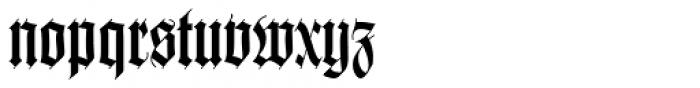 Wilhelm Klingspor Gotisch Com Roman Font LOWERCASE