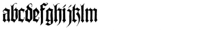 Wilhelmschrift Font LOWERCASE