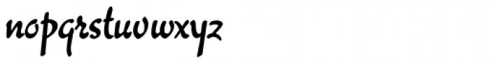 Willard Sniffin Script Bold Font LOWERCASE