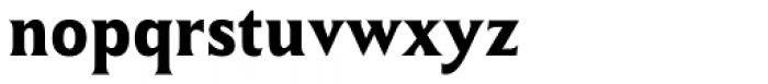 Winsel Condensed Bold Font LOWERCASE