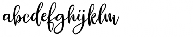 Winter Miracle Script Font LOWERCASE