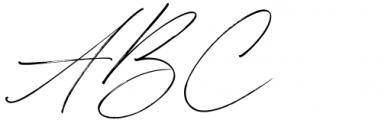 Winterlady Regular Font UPPERCASE
