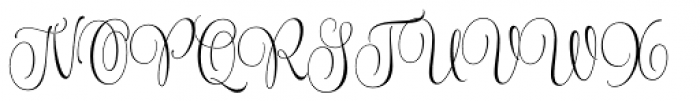 Wishes Script Pro Text Light Font UPPERCASE