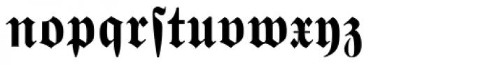 Wittenberger Fraktur MT Bold Dfr Font LOWERCASE