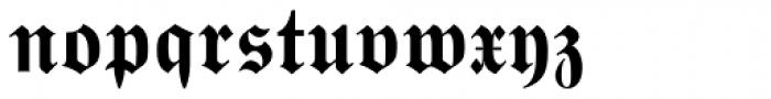 Wittenberger Fraktur Std Bold Font LOWERCASE